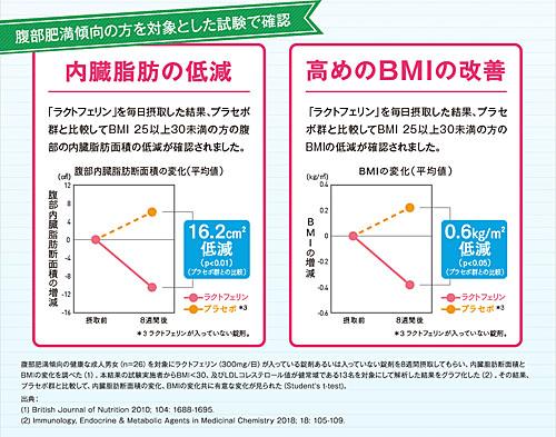 内臓脂肪低減を臨床実験で確認